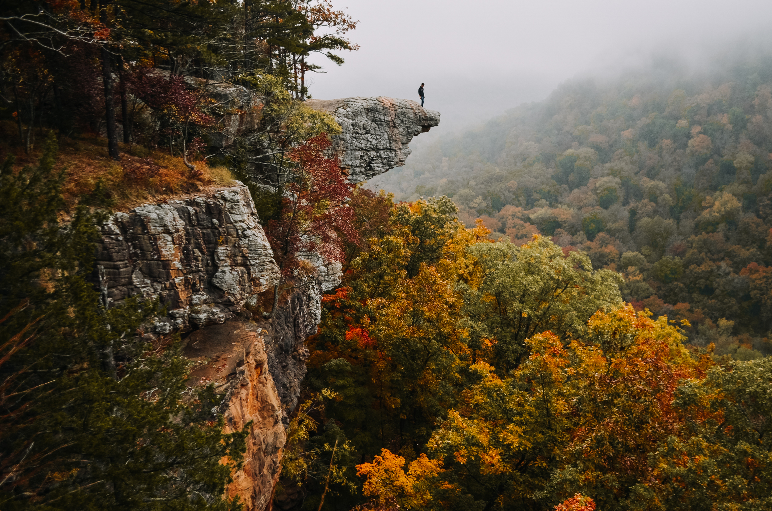 Buffalo River Fall Color Guide