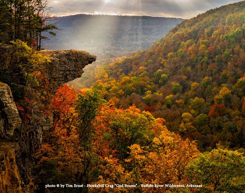 Tim's Whitaker Point Image