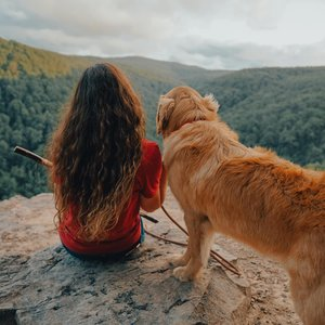 Pet-Friendly Trails