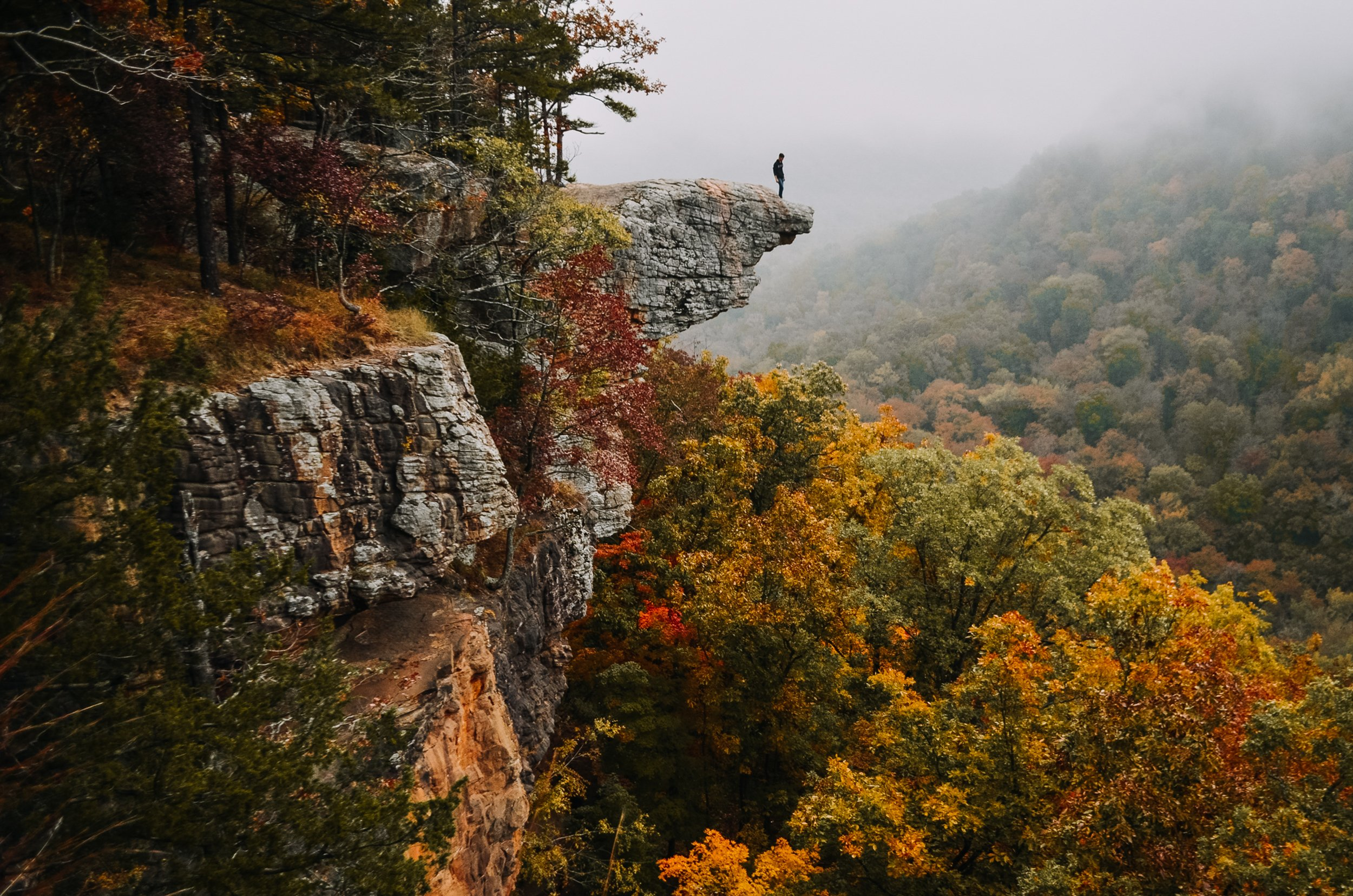 100 East Texas Traveler Nov Fall Foliage In Nacogdoches