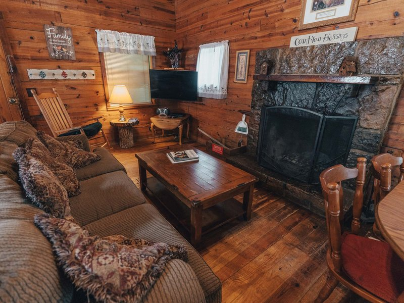 Another view of the Songbird Cabin's living area.