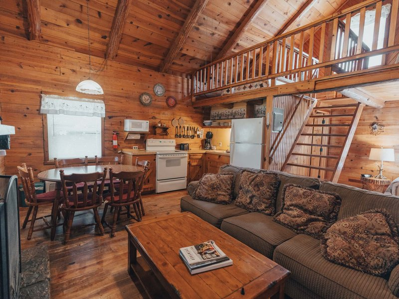 The Songbird Cabin's open living, dining and kitchen area.