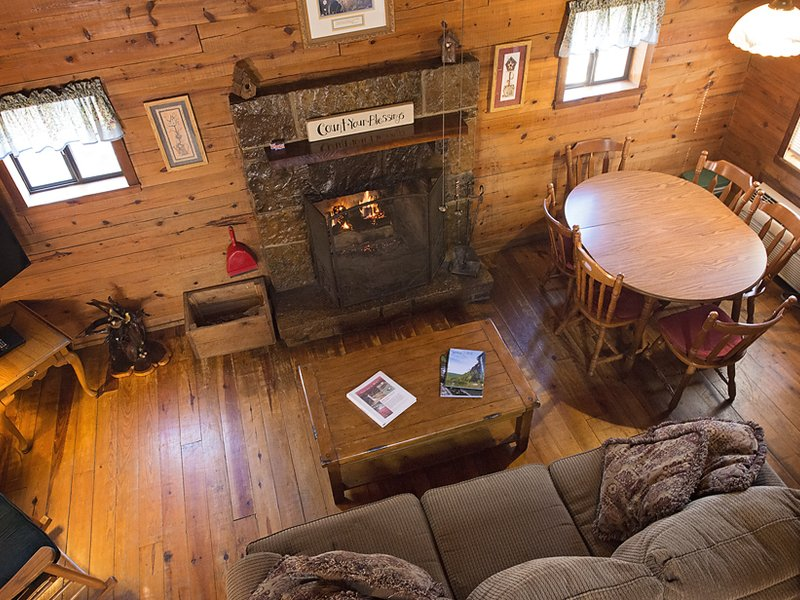A view of the living area from the Songbird Cabin's loft.