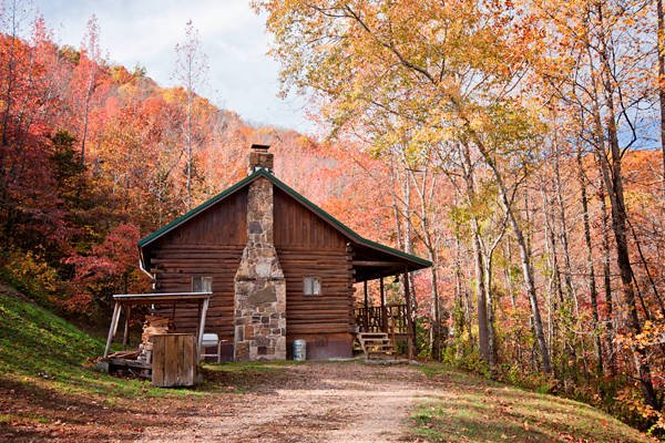 Songbird Cabin Buffalo National River Cabins And