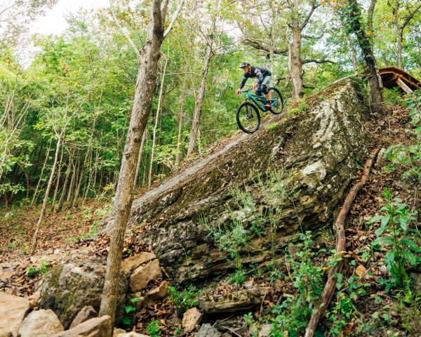 A mountain bike rider goes over an interesting feature along the BOC Ponca Downhill MTB Trail.