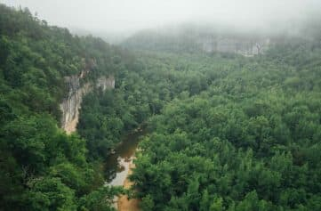 Foggy morning view over the Buffalo National River from the Goat Trail.