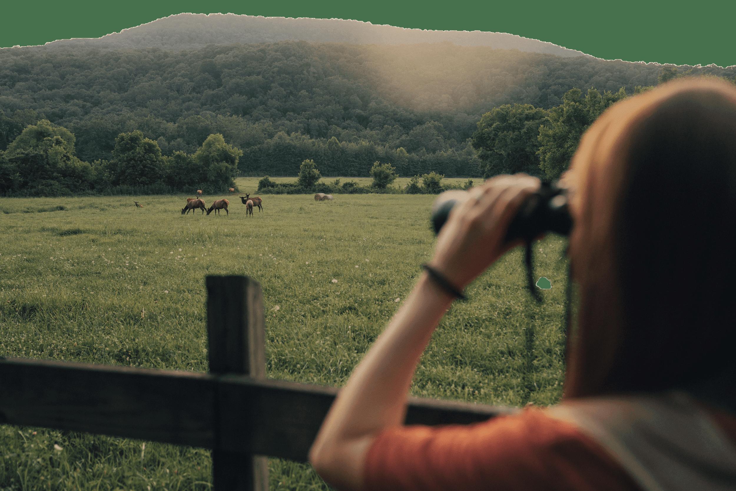 Young girl using binoculars to view wildlife