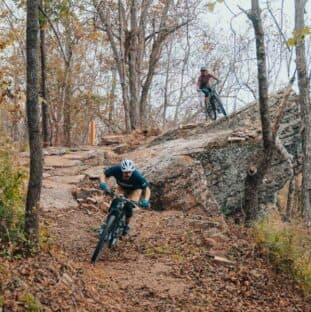 two mountain bikers in the woods