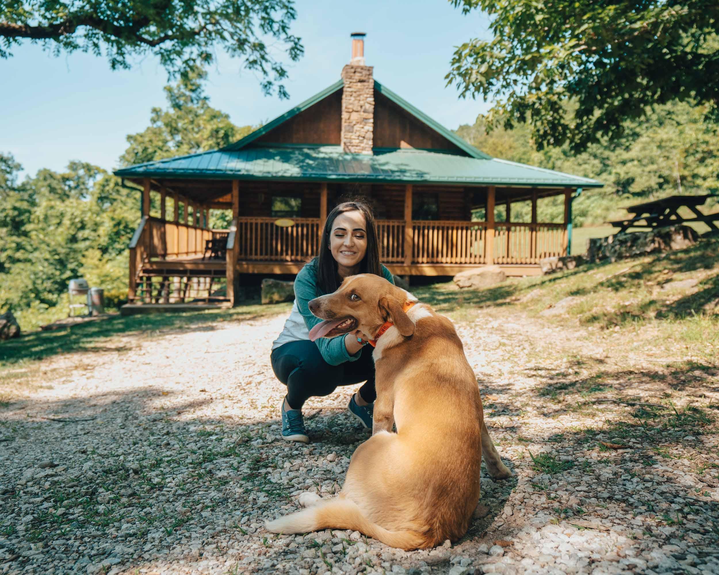 Cabin Dog