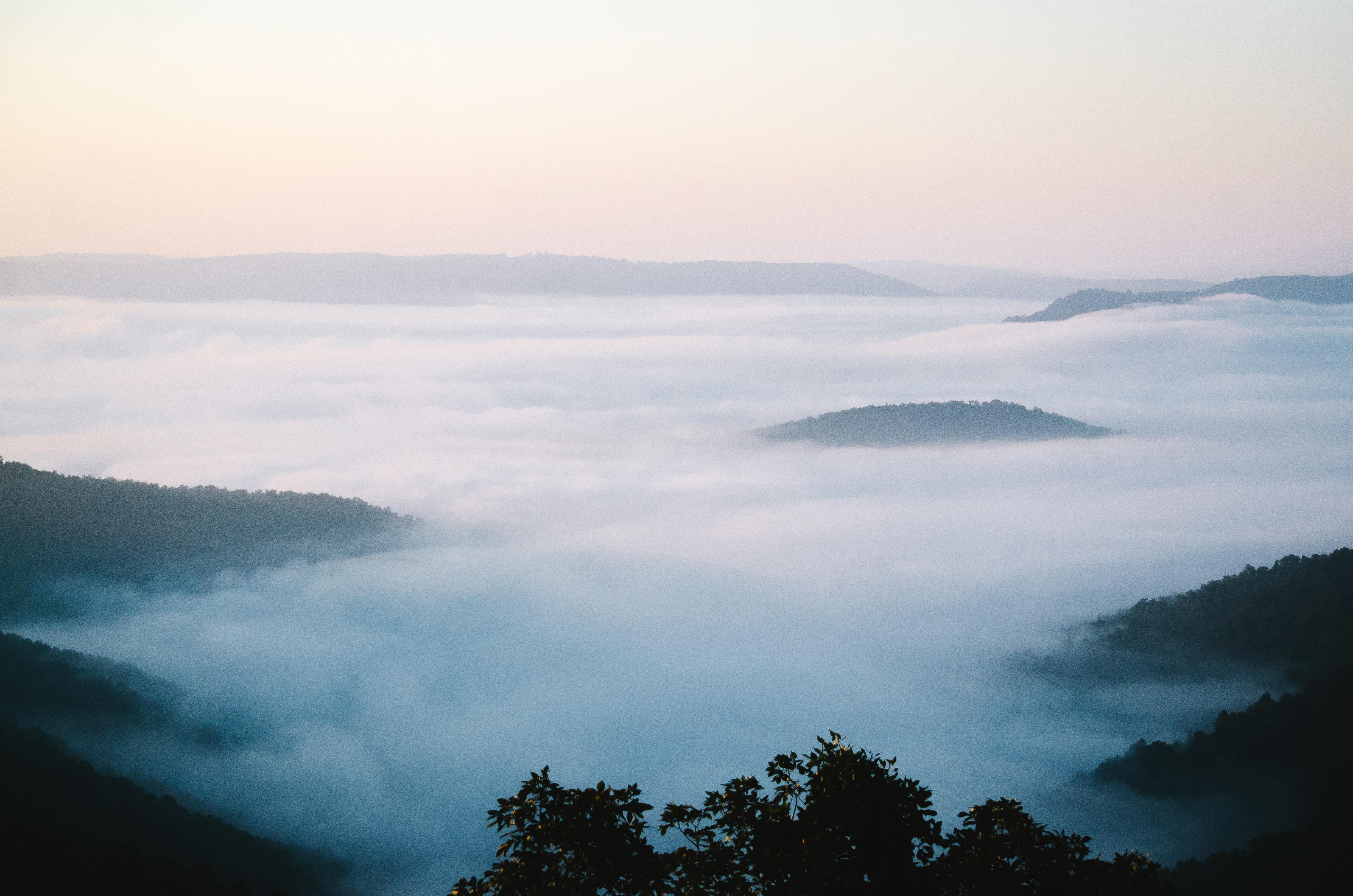Cabin X Mist