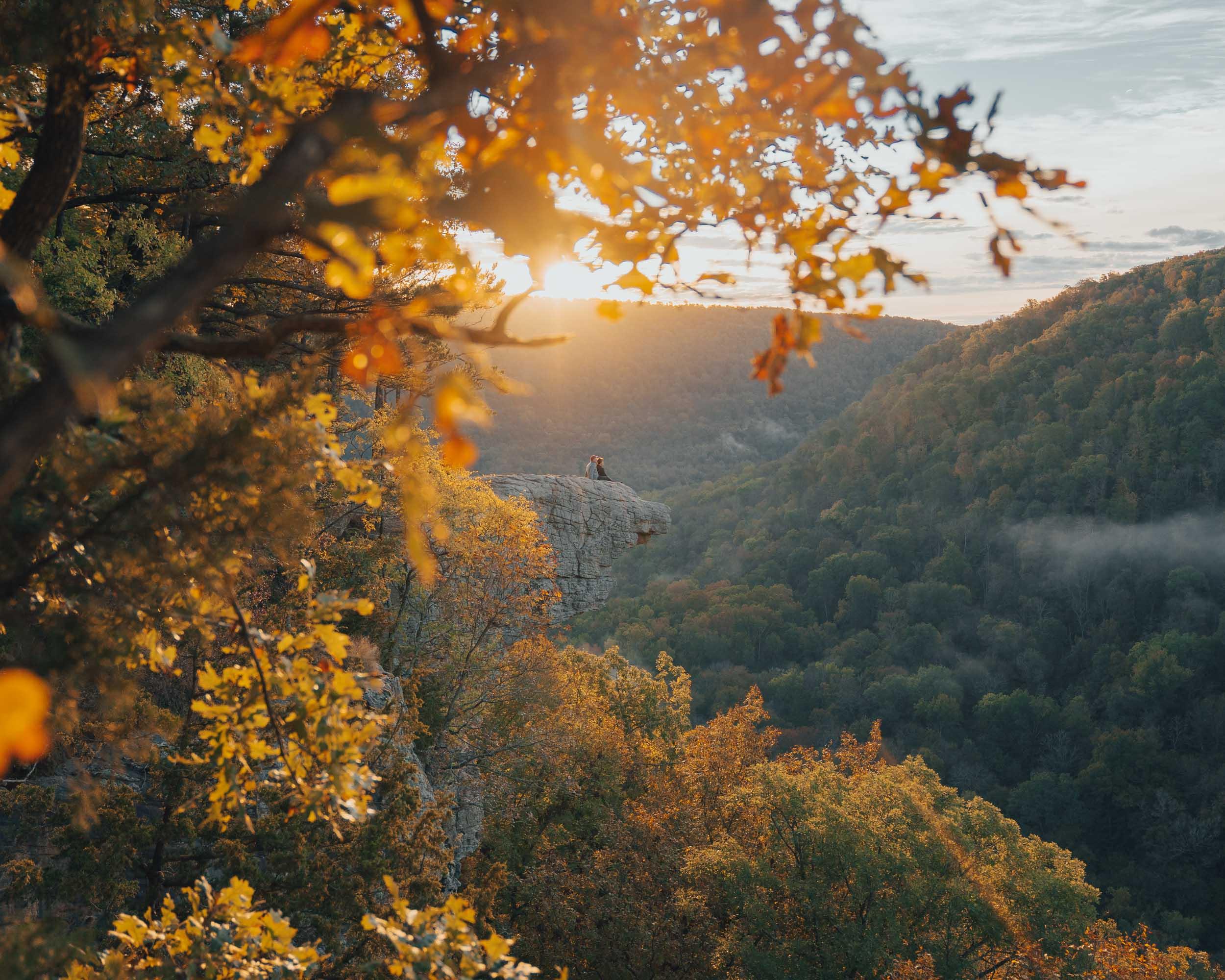 autumn at Whitaker Point
