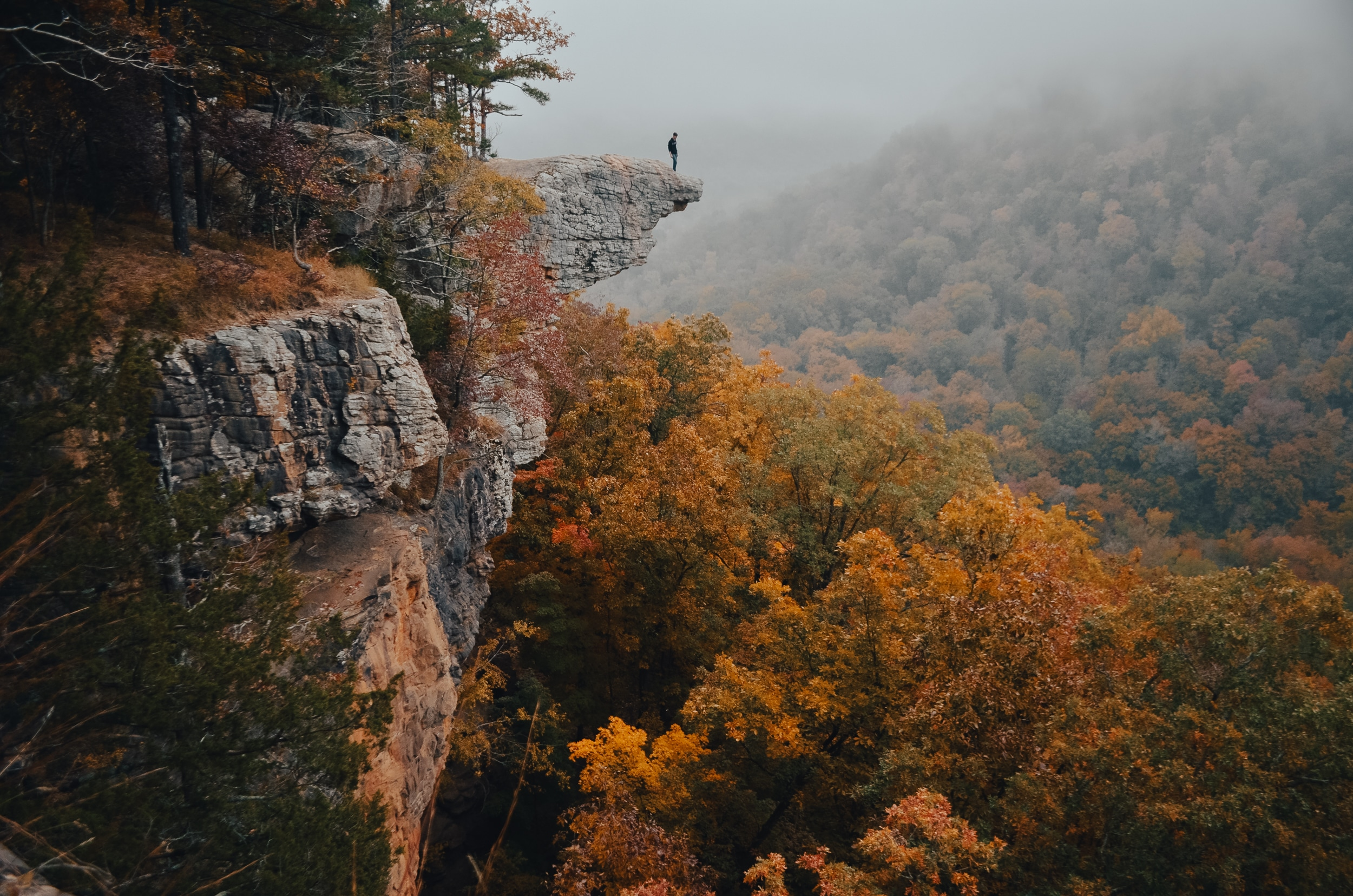 Spectacular view from the Whitaker Point in Buffalo River country